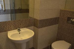 Hotel u Michalika, Отели  Пщина - big - 9
