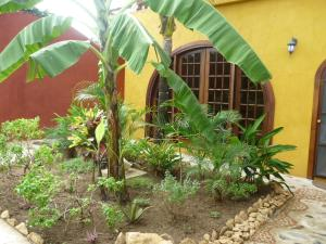 Villa Pelicano, Bed and breakfasts  Las Tablas - big - 2