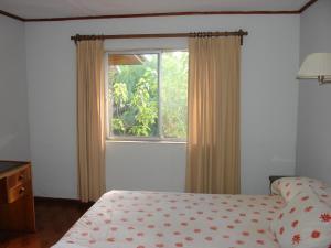 Hotel Victoria, Hotely  Hanga Roa - big - 19