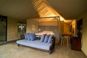 Honeyguide Tented Safari Camps, Campeggi di lusso  Manyeleti Game Reserve - big - 5