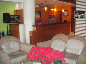 Hotel Bienvenido, Hotel  José Cardel - big - 22