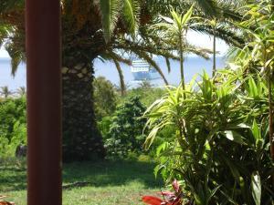 Hotel Victoria, Hotely  Hanga Roa - big - 43