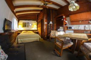 Chalet Lisl Lodge - Aspen