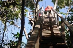 Green Parrot Beach Houses and Resort, Lodge  Maya Beach - big - 57