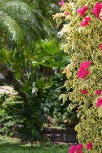 Southside Holiday Village, Villaggi turistici  Rockhampton - big - 30
