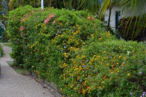 Southside Holiday Village, Villaggi turistici  Rockhampton - big - 31