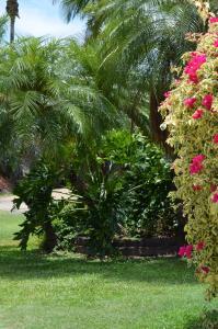 Southside Holiday Village, Dovolenkové parky  Rockhampton - big - 20