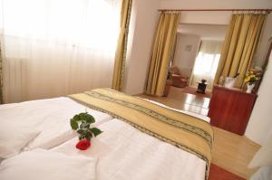 Dali Hotel, Hotels  Constanţa - big - 16