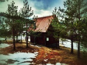 Previja Zlatibor Chalet, Horské chaty  Zlatibor - big - 53