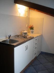 Apartments Tajana, Apartmány  Novigrad Istria - big - 50
