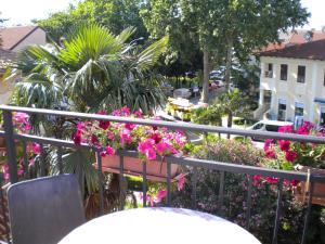 Apartments Tajana, Apartmány  Novigrad Istria - big - 25
