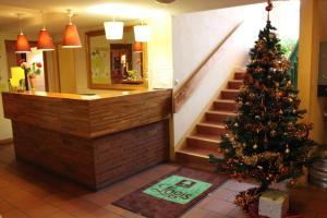 Logis Les Provinciales, Hotel  Arpajon-sur-Cère - big - 23