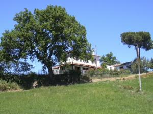 Le Cicale - AbcAlberghi.com