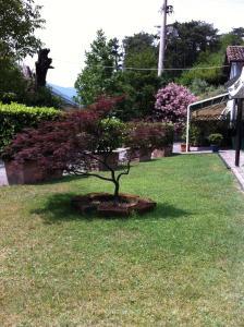 Trattoria I Bodega, Guest houses  Abbadia Lariana - big - 9