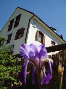 Rifugio Casa Alpina Julius Kugy, Hostels  Malborghetto Valbruna - big - 29