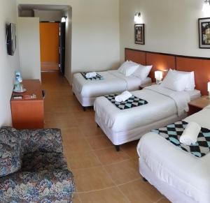 Express Inn Coronado & Camping, Hotely  Playa Coronado - big - 21