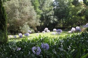 Aan De Vliet Guest House, Vendégházak  Stellenbosch - big - 37