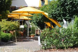 Ringhotel Goldener Knopf, Отели  Бад-Зекинген - big - 24