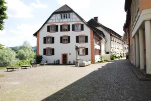 Ringhotel Goldener Knopf, Отели  Бад-Зекинген - big - 28