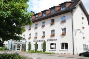 Ringhotel Goldener Knopf, Отели  Бад-Зекинген - big - 29