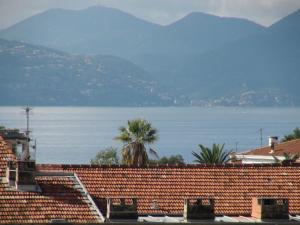 Appartements Villa Les Palmes, Apartmány  Cannes - big - 43