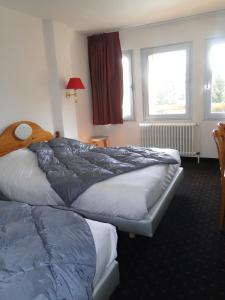 Hotel Les Mélèzes, Hotely  Les Deux Alpes - big - 15