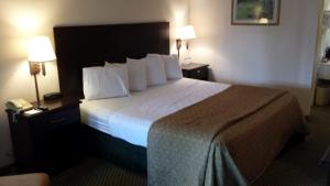 Vista Inn & Suites Tampa, Hotely  Tampa - big - 8