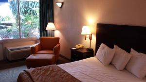 Vista Inn & Suites Tampa, Hotely  Tampa - big - 7