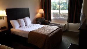 Vista Inn & Suites Tampa, Hotely  Tampa - big - 2