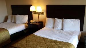 Vista Inn & Suites Tampa, Hotely  Tampa - big - 3