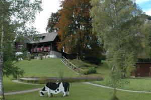 Haus Florentine, Holiday homes  Sankt Gilgen - big - 5