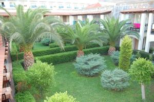 Tiana Beach Resort, Hotels  Turgutreis - big - 65