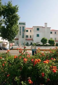 Hotel Montemor, Hotels  Montemor-o-Novo - big - 28