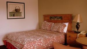 Sunset Inn and Suites, Motelek  Fredericksburg - big - 9