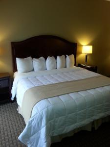 Dvoulůžkový pokoj s manželskou postelí velikosti King – kuřácký