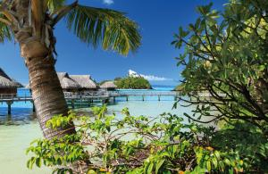 Sofitel Bora Bora Private Island, Hotels  Bora Bora - big - 20