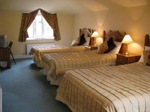 Coastline House, Bed and Breakfasts  Dingle - big - 3