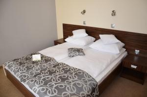 Hotel u Michalika, Отели  Пщина - big - 3