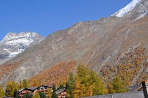 Apartmenthaus Holiday, Apartments  Saas-Fee - big - 39