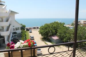 Anapa-Patio Guest House, Affittacamere  Anapa - big - 2
