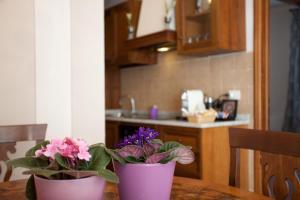 Relais Villa Belvedere, Apartmánové hotely  Incisa in Valdarno - big - 84