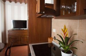 Relais Villa Belvedere, Apartmánové hotely  Incisa in Valdarno - big - 45