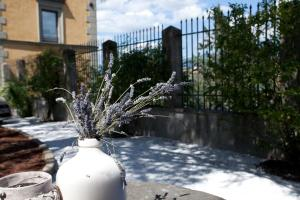 Relais Villa Belvedere, Aparthotely  Incisa in Valdarno - big - 114