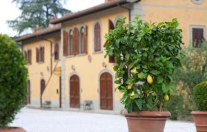 Relais Villa Belvedere, Aparthotely  Incisa in Valdarno - big - 112