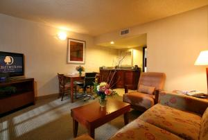 DoubleTree Suites by Hilton Tucson Airport, Hotels  Tucson - big - 5