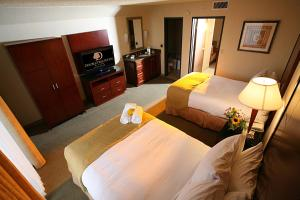 DoubleTree Suites by Hilton Tucson Airport, Hotels  Tucson - big - 9