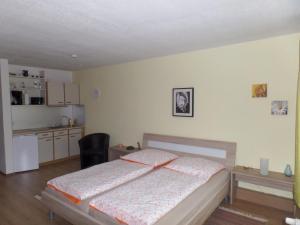 Appartements im Predigtstuhl Resort, Apartmanok  Sankt Englmar - big - 12