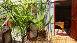 Ryad Bab Berdaine, Riads  Meknès - big - 57
