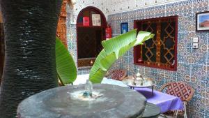 Ryad Bab Berdaine, Riads  Meknès - big - 78