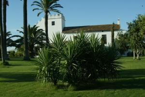 Hacienda La Indiana, Vendégházak  Los Palacios y Villafranca - big - 8